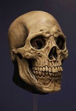 Skeleton Grim Reaper Halloween ADULT LATEX FULL OVERHEAD DEATH SKULL Mask