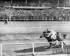 1938 Champion Racehorses SEABISCUIT vs LIGAROTI Glossy 8x10 Photo Print