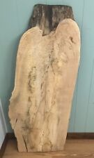 #314 SPALTED MAPLE RUSTIC LIVE NATURAL EDGE SLAB AMBROSIA FEATHER GRAIN