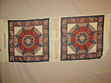 """2 Printed Pillows Tops or Quilt Blocks- 16"""""""