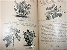 Domenico Tamaro, TRATTATO di FRUTTICOLTURA 3 volumi 1900 Hoepli tavole illustr.