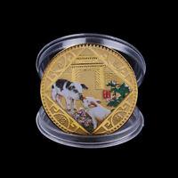 2019 Pig Commemorative Coin Chinese Zodiac Anniversary Coin Souvenir MedalF sa