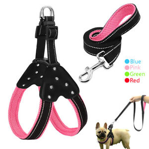 Nylon Step In Dog Harness and Leash Padded Reflective for Schnauzer Jack Russell