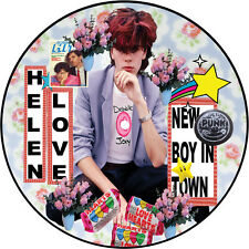 """Helen Love 'New Boy In Town' 7"""" picture disc indiepop"""