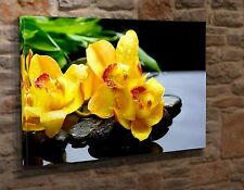 Box Canvas Art Print Picture Zen Garden Yellow Orchid Flower 16x20  Giclee EA12