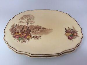 A Set Of 2 Vintage Myott Son & Co Homeland Pattern 76/201 Dinner Plates 25cm #CF