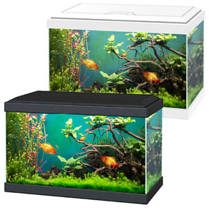 Ciano Aqua 20 Classic Aquarium White/Black with Filter Beginner Fish Tank