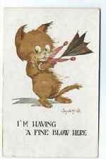 Donald McGill Animals Collectable Artist Signed Postcards