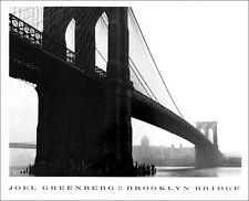 Joel Greenberg Brooklyn Bridge New York City Poster 26 x 32