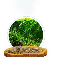 40 comprimés réservoir d'aquarium d'engrais substrat plante for aquarium T1N