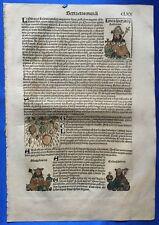 Altkoloriertes Blatt CLXX, Schedel Weltchronik 1493, Nürnberg, HAGELSCHAUER