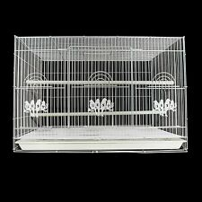 Large Bird Cage For Parrots Cockatiels Budgie Canary Finch 60 Cm x 40cm WHITE