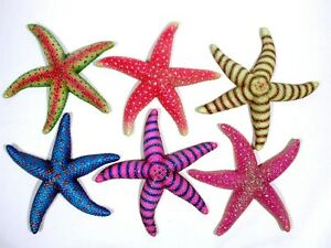 "Hand Painted Large 8"" Tropical Starfish Replica Wall Mount Decor Plaque 70S"