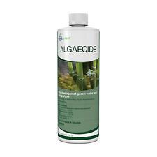 AQUASCAPE #96024 ALGAECIDE 32 oz./946 ml **NEW BOTTLE LABEL** = fresher product!