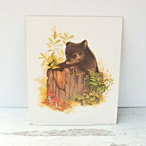 Baby Bear Art Litho Bernard Picture Co. 8 x 10 AN-370