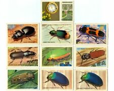Vintage 1960s SHELL OIL Australian Beetles & Meteorology Picture Trading Cards!