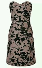 BNWT * COAST * SIZE 8 (UK) MIRAH JACQUARD DRESS, DUSKY PINK/BLACK, NEW
