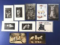 10 Cats & Kittens ANTIQUE Postcards 1900s. For Collectors. Nice w Value