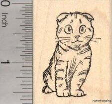 Scottish Fold Kitty Tabby Rubber Stamp, Cat with Stripes E18106 Wm