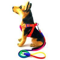 Rainbow Dog Leash Rope Nylon Dog Collar Harness Pet Leash Walking Training Leash