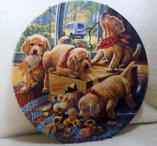 Labrador golden retriever puppy plate - very charming - will make you smile