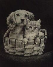 Vintage San Marcos Blanket Puppy Kitten Basket 71 X 57 Inches Ryltex Black/Gray