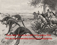 Marsupial Kangaroo Hunting in Australia, 1890s Antique Print & Article