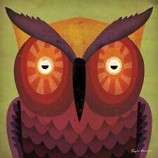 Owl Wow by Ryan Fowler Vintage Owl Print 12x12