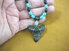 "(s228-24) 1-5/8"" fossil Megalodon shark Tooth black onyx + turquoise Necklace"