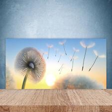 Crédence de cuisine en verre Panneau Paroi 100x50 Floral Pissenlit