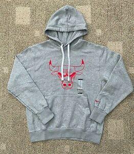 Mens Sz Medium Nike Sportswear Pullover Hoodie Sweatshirt Gray NBA Chicago Bulls