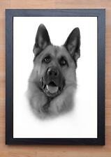 STUNNING FRAMED GERMAN SHEPERD / DOG DRAWING / PRINT 2