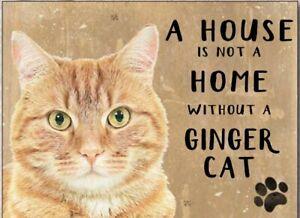 A House Is Not A Home..Ginger Cat fridge magnet   (og)