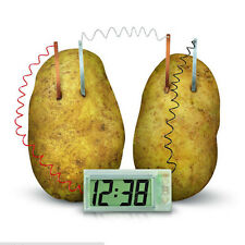 Potato Clock Novel Green Science Project Experiment Kit Lab Home School Toy