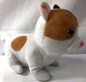"""Brown White Plush Dog Stuffed Annual Pink Nose Bulging Eyes 9"""""""