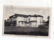 C004242  SUZZARA   SAILETTO SEMINARIO VESCOVILE  PER CASTELLUCCHIO VG 1939
