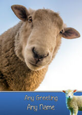 Personalised Sheep Birthday Card - Any Name/Greeting/Message