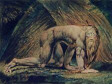 William Blake Nabucodonosor Tate Colección Antiguo Arte Pintura impresión 3057omlv