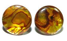 BRIGHT YELLOW GOLD ABALONE PAUA SHELL CUFF LINKS (078a)