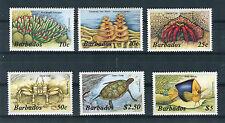 Barbados 1985 Fauna marina Yvert 608 - 13  MNH