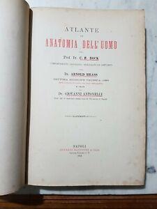 ATLANTE DI ANATOMIA DELL'UOMO  RARISSIMO PROF. BOCK 90 LITOGRAFIE COLORE 1891