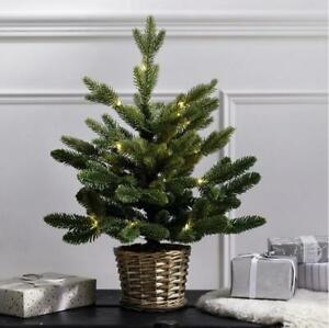 The White Company Pre-Lit Christmas Tree Willow Basket Battery 1.5ft RRP £30
