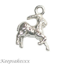 Sterling Silver Zodiac Capricorn Star Sign Astrology UK 925 NEW 3D Charm Charms