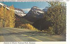 Autumn in  Glacier National Park  Montana  Chrome Postcard 267b