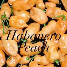 HOT CHILLI PEPPER - HABANERO PEACH - 20 SEEDS - VERY HOT