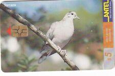 URUGUAY CHIP PHONECARD USED BIRD,3,