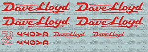 CLASSIC DAVE LLOYD vinyl decals - perfect for re-sprays