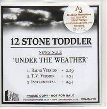 (508D) 12 Stone Toddler, Under the Weather - DJ CD