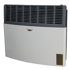 NEW Ashley Non-Electric Direct Vent Natural Gas Heater 17K Btu Off Grid Stove