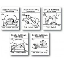 Funny Sleeping Dog Fridge Magnets Rupert Fawcett Dog Owner Stocking Filler Gift